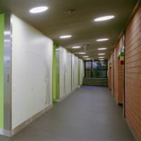 Erschliessung: Korridor mit farbigen Wänden und Grafik