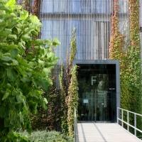 Fassade: Eingangsbereich mit Pflanzen rankend bewachsen (aus Holz)