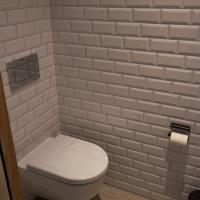 Sanitär: Das WC