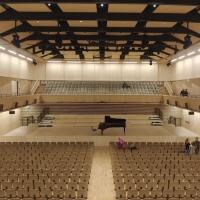Der Konzertsaal in Holz (aus Holz)