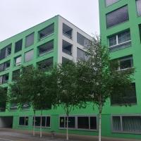 Die grüne Fassade mit dem weissen Kern