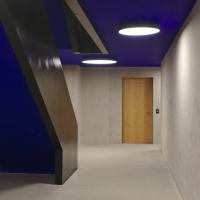 Erschliessung: Treppenhaus mit der blauen Decke und schwarz gestrichener Treppe (aus Beton)