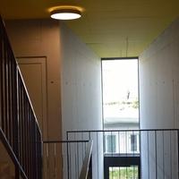 Geländer: Treppenhaus mit Metallstaketengeländer